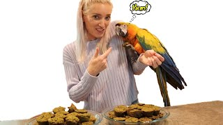 EASY Birdie Bread Recipes For ALL Parrots