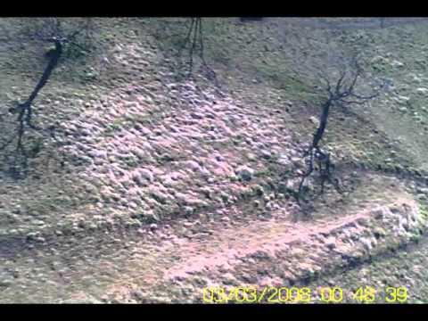 Stirofly Air video