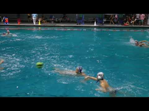 STA vs Dr Phillips Mens Water Polo 3 2 2018