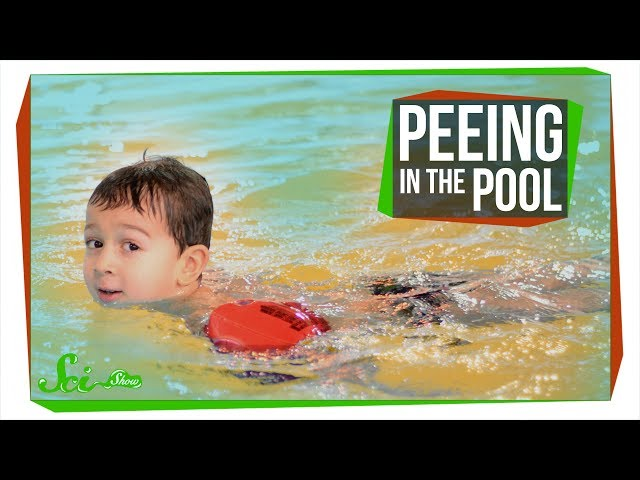 Why Peeing in the Pool Could Be Dangerous | Disinfection By-Products
