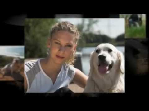 We Serve Pets - San Diego Pet Care Travel Video