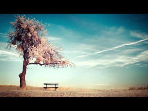 [1 Hour] Healing Tambura - Throat Chakra Meditation Music   Taanpura Sounds