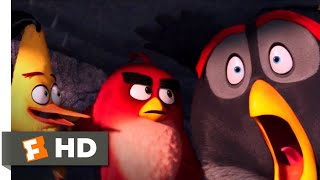 The Angry Birds Movie - Mighty Eagle Noises Scene | Fandango Family
