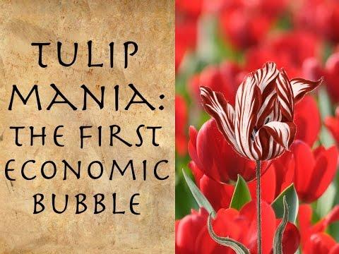 Tulip Mania: The First Economic Bubble