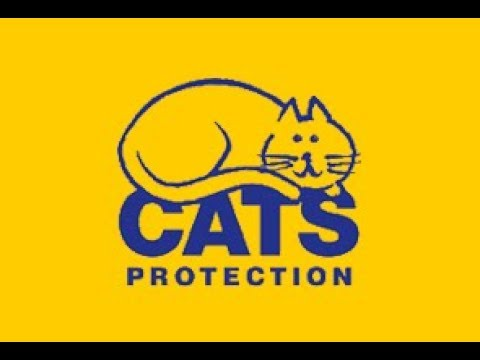 Cats Protection - Gildersome Homing Centre