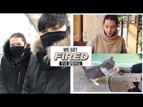 We Got FIRED 😢  & Seoul is Freezing! 국제커플의 손발꽁꽁 서울 브이로그 & 저희 잘렸어요