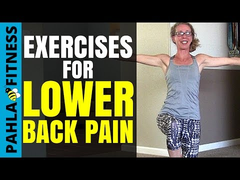 How To Reduce Lower Back Pain | Strengthen Your Core with 5 Easy No Equipment Exercises