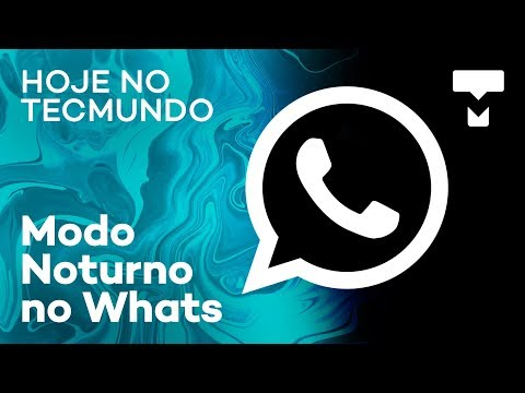 Despacho Postal, SpaceX, Modo Escuro no WhatsApp e mais - Hoje no TecMundo