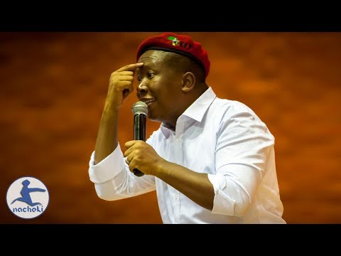 Julius Malema Challenges Africans to Stop Self Hating One Another
