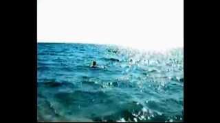 Крым Мирный Дорвались до моря,поплавали от души!