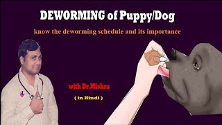 Deworming in puppies ( in hindi )