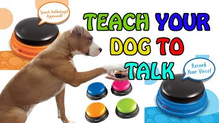 How To Teach Your Dog To Communicate With Buttons