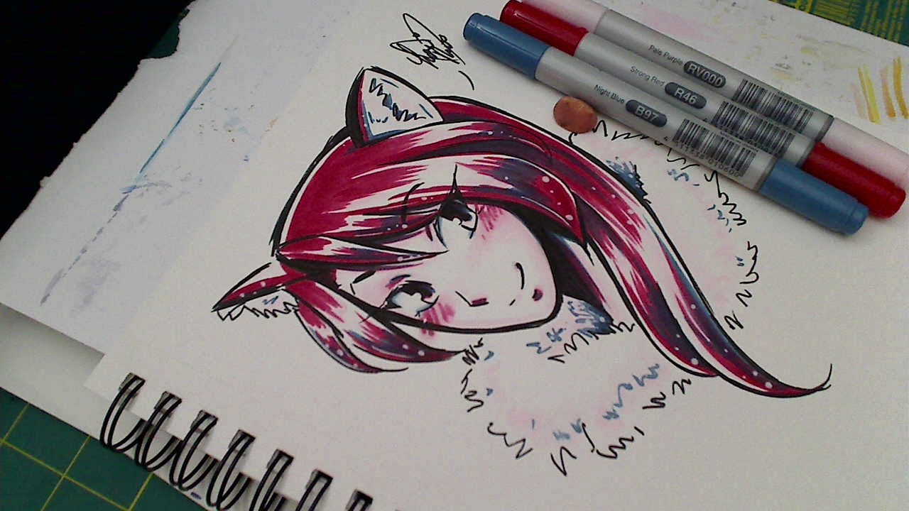 3 Marker Challenge Drawing And Coloring Copics RV000