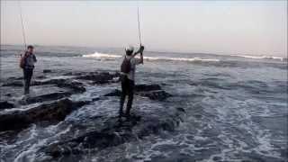 Convívio Pesca com Amostras - Captura do dia - Robalo de 5Kg - Figueira da Foz 7 Julho 2013