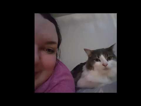 SINGING TO MY CAT LOL