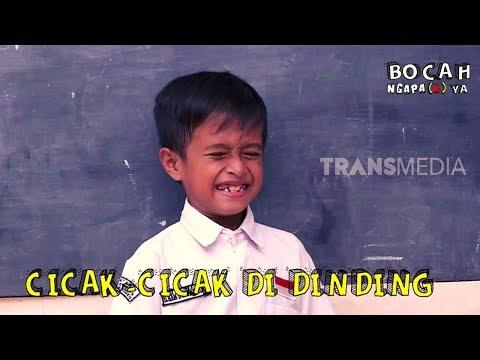 CICAK-CICAK DI DINDING | BOCAH NGAPA(K) YA (16/03/19)