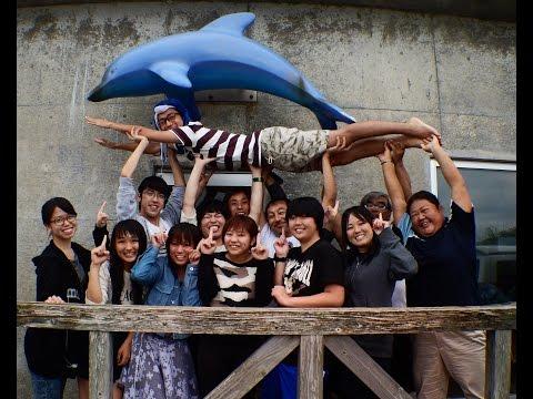 稲取発日帰り ドルフィンスイム&ダイビングツアー 2015年9月27日