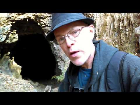 AY14: Abandoned Feliciana Mine