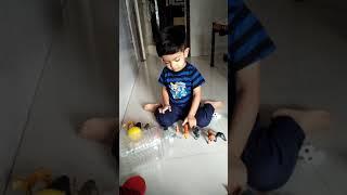 Dhruvil Patel BECHARAJI play animals 1