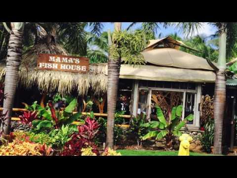 Paia Maui Northshore Lifestyles and Island Living