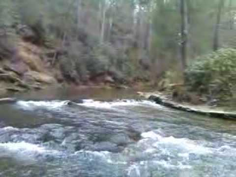 Brigadoon lodge on the soque river north georgia jeff for Fly fishing north georgia