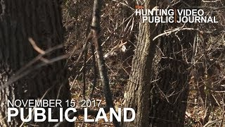 Public Land Day 31: Giant Buck at 30 Yards | The Hunting Public