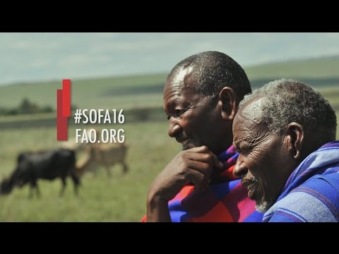 SOFA 2016 - Climate change, agriculture and food security