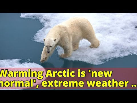 Warming Arctic is 'new normal', extreme weather events will be more frequent: Report