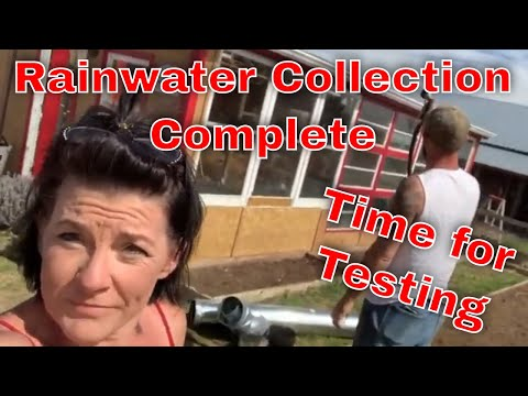 Easy Greenhouse Water Collection - Any 1 Can DIY! 8
