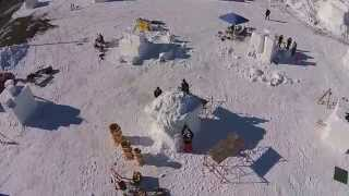 2015 Saint Paul Winter Carnival Snow Sculpting Competition Day 1, Flight 2