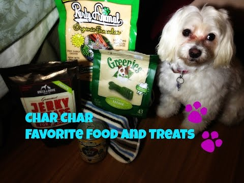 dog-product-review:-favorite-food-and-treats