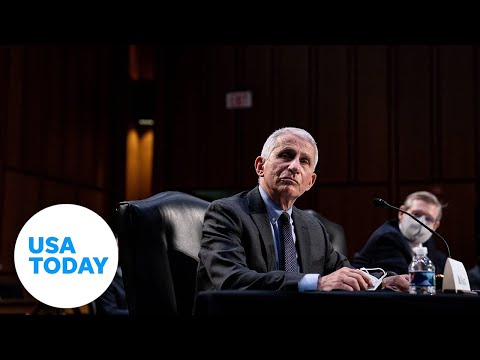Senate Committee hearing on COVID-19 with Dr. Fauci (LIVE) | USA TODAY