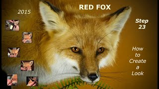Step 23~ Red Fox ~ How to Create a Look     The Head