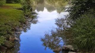 Ludwig Van Beethoven Piano Sonata No 23 F Minor Op 57 Appassionata 1 Allegro Assai