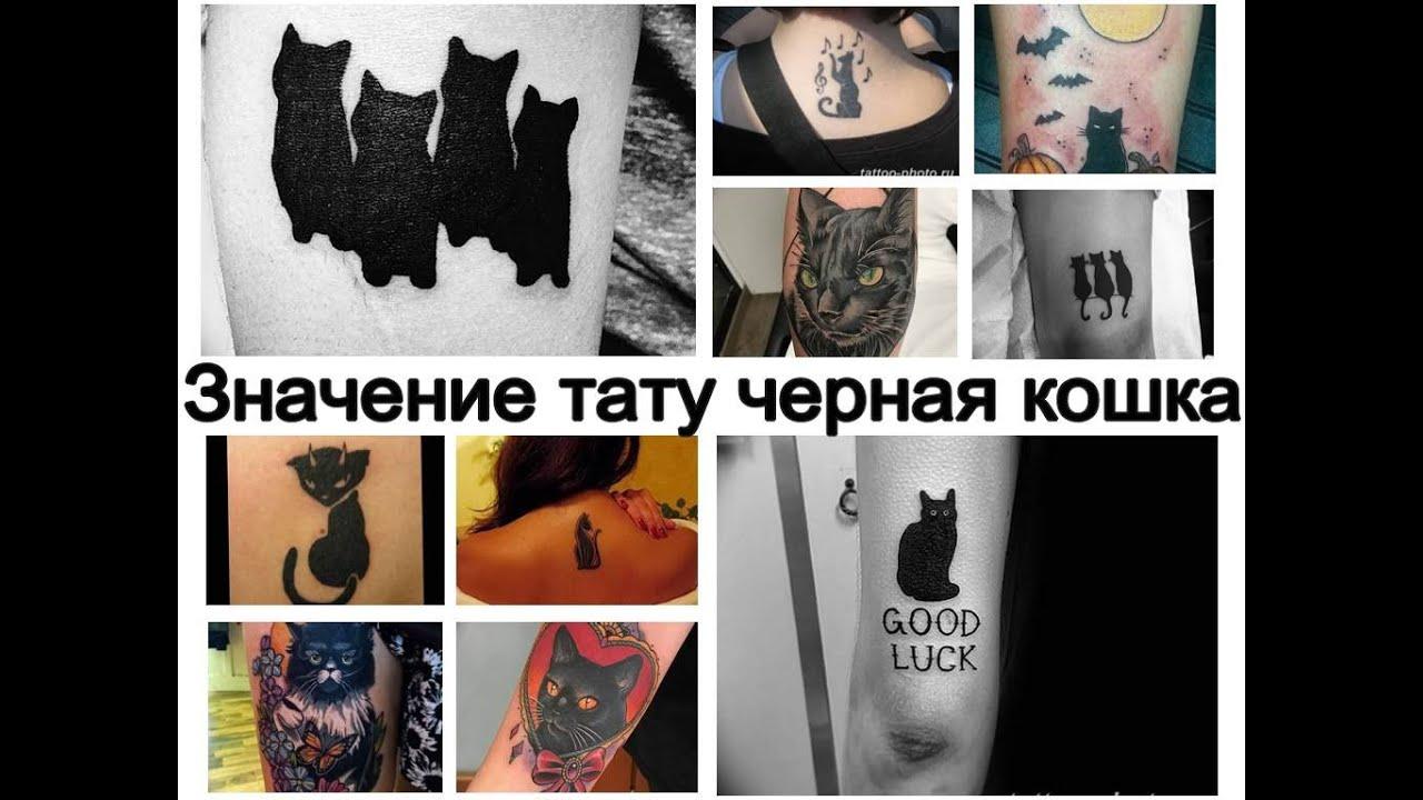 Значение тату черная кошка - информация и фото примеры готовых татуировок для сайта tattoo-photo.ru