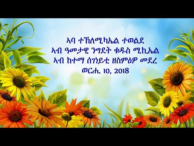 Abba Teklemichael Tewolde in Segeneiti 10, 2018