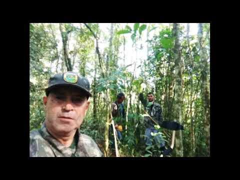 Guapiara SP expedição nas trincheiras Clineu B Magalhães
