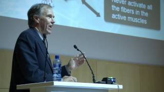 Prof Tim Noakes - Why did I support high carbohydrate diets for athletes for so long?