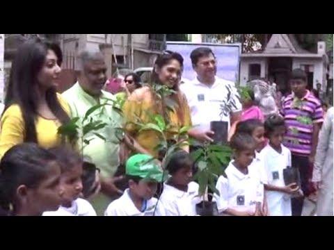 World Environment Day - 2017 | Pre Celebration At Kolkata, West Bengal, India