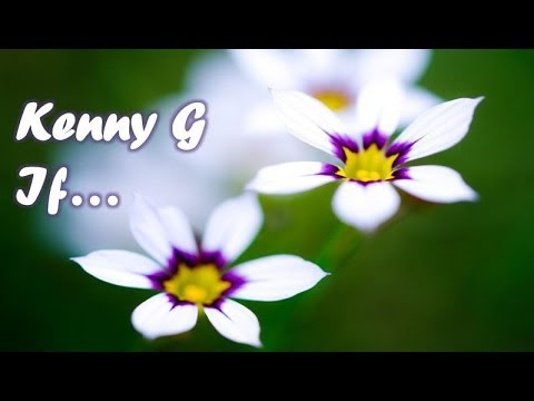 Kenny G - If