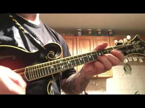 Rawhide (mandolin)