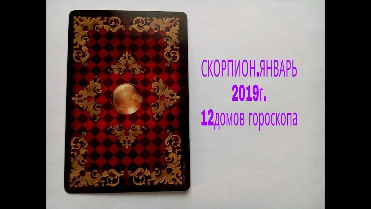 СКОРПИОН.ЯНВАРЬ.2019г.12 домов гороскопа