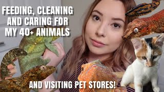 My Daily Pet Care Routine With ALL My Animals! | Feedings + Visiting Pet Stores | Vlogmas Day 3