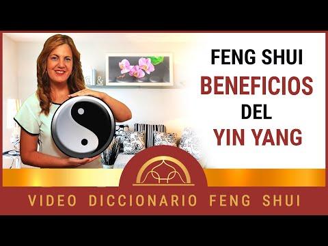 👉 Como aplicar el Yin y el Yang ☯️ en Feng Shui ㊗️