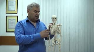 Лечение Заболеваний Нервной Системы (лечение от периферии или из центра).