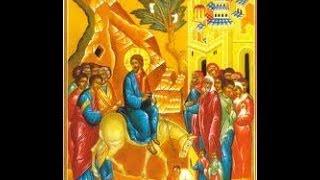 الجالس فوق الشاروبيم- Palm Sunday -احد الزعف-Bekhit Fahim