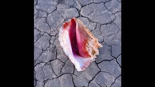 The Killers-The Calling