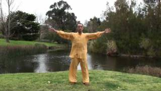 Ziran Qigong Level 1 Form - 1st Half