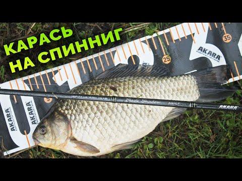 КАРАСЬ на СПИННИНГ весной или отводной поводок на белую рыбу