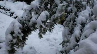 Olargues Winterinvasion